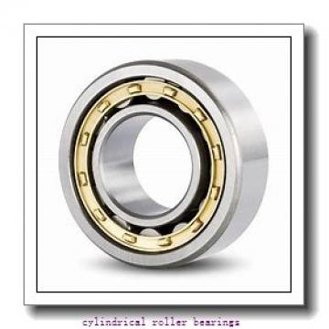 0.75 Inch   19.05 Millimeter x 1.875 Inch   47.625 Millimeter x 0.563 Inch   14.3 Millimeter  CONSOLIDATED BEARING RLS-8  Cylindrical Roller Bearings