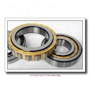 2.559 Inch | 65 Millimeter x 3.937 Inch | 100 Millimeter x 1.811 Inch | 46 Millimeter  CONSOLIDATED BEARING NNF-5013A-DA2RSV  Cylindrical Roller Bearings