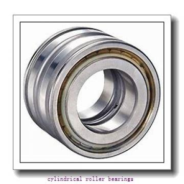 4.724 Inch | 120 Millimeter x 10.236 Inch | 260 Millimeter x 2.165 Inch | 55 Millimeter  CONSOLIDATED BEARING N-324 M  Cylindrical Roller Bearings